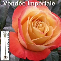 vendee-imperiale